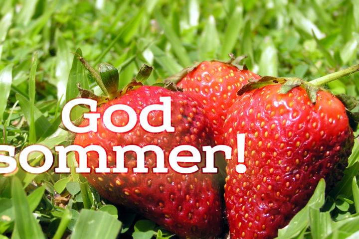 God sommer fra Euroteknikk!